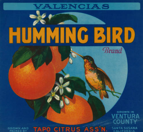 Fruit crate label for Sunkist lemons shows a humming bird surrounded by oranges