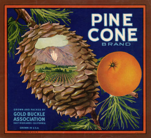 Fruit crate label shows a pine cone and an orange