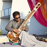 Man playing a sitar