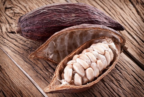 cacao beans and fruit