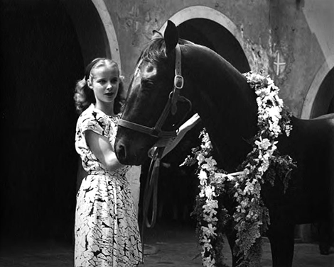 Girl with horse at Blessing of the Animals