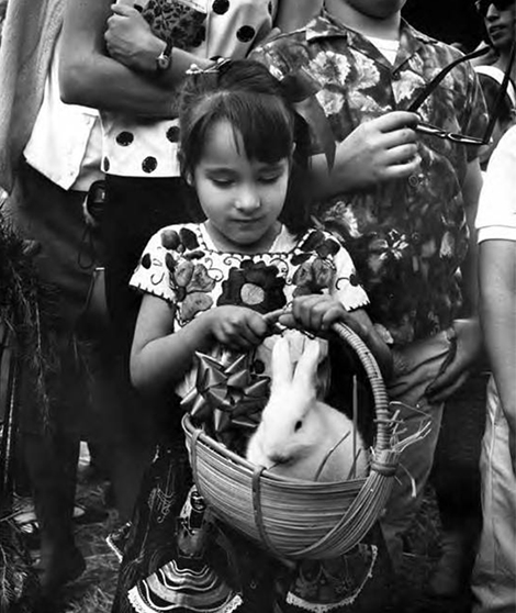Girl with rabbit in basket