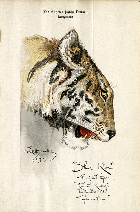 William Henry Drake autograph with a drawing of a tiger