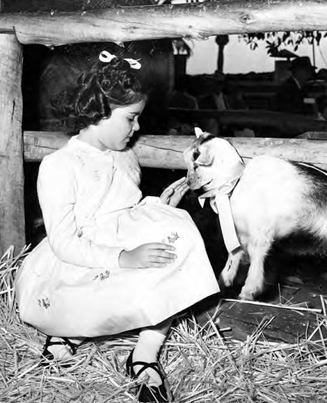 Girl with goat at Blessing of the Animals