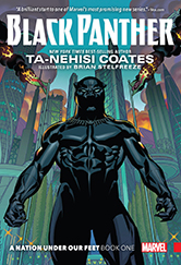 black panther book cover