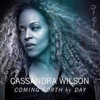 a photograp of Cassandra Wilson, a partial side profile
