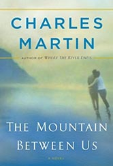 book cover for the mountain between us. a water color illustration of two people holding each other while walking near a mountain, on the beach.