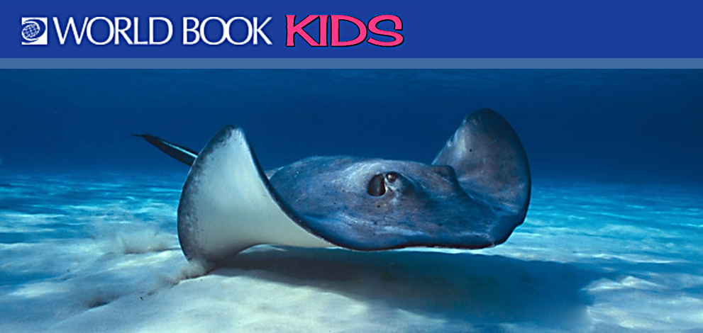 world book kids logo and image of manta ray