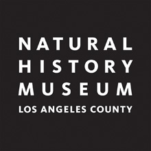 Logo for the Natural History Museum