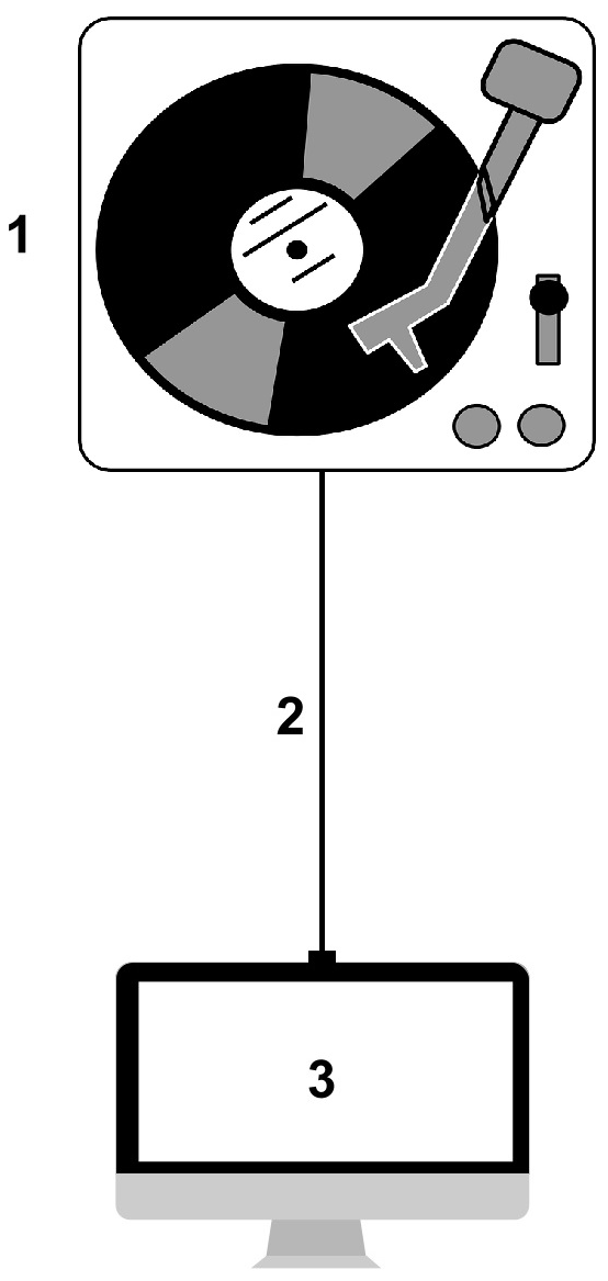 Diagram of vinyl digitization process