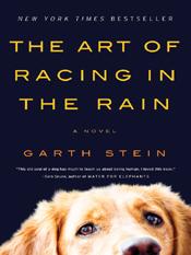 Garth Stein: The Art of Racing in the Rain