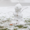 melting snowman in a field