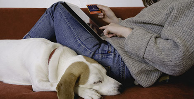 dog sleeping next to woman using library card and tablet computer