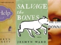 book covers for The Help, Salvage The Bones and Little Friend