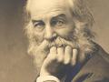 Walt Whitman by G. Frank E. Pearsall 1869