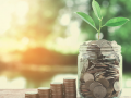 money and small tree in glass as concept of saving and growing money