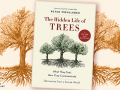 The Hidden Life of Trees: What They Feel, How They Communicate: Discoveries From a Secret World book cover