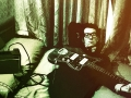 English pop/rock singer and songwriter, Elvis Costello