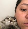 Jessica Krill with her kitten, Arwen