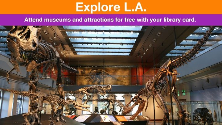 Dinosaurs in a museum