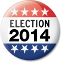 Election 2014 button