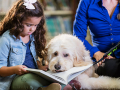 girl reading to a therapy dog